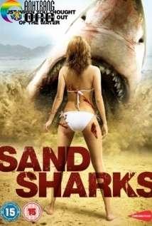 CC3A1-ME1BAADp-CC3A1t-Sand-Sharks-2011